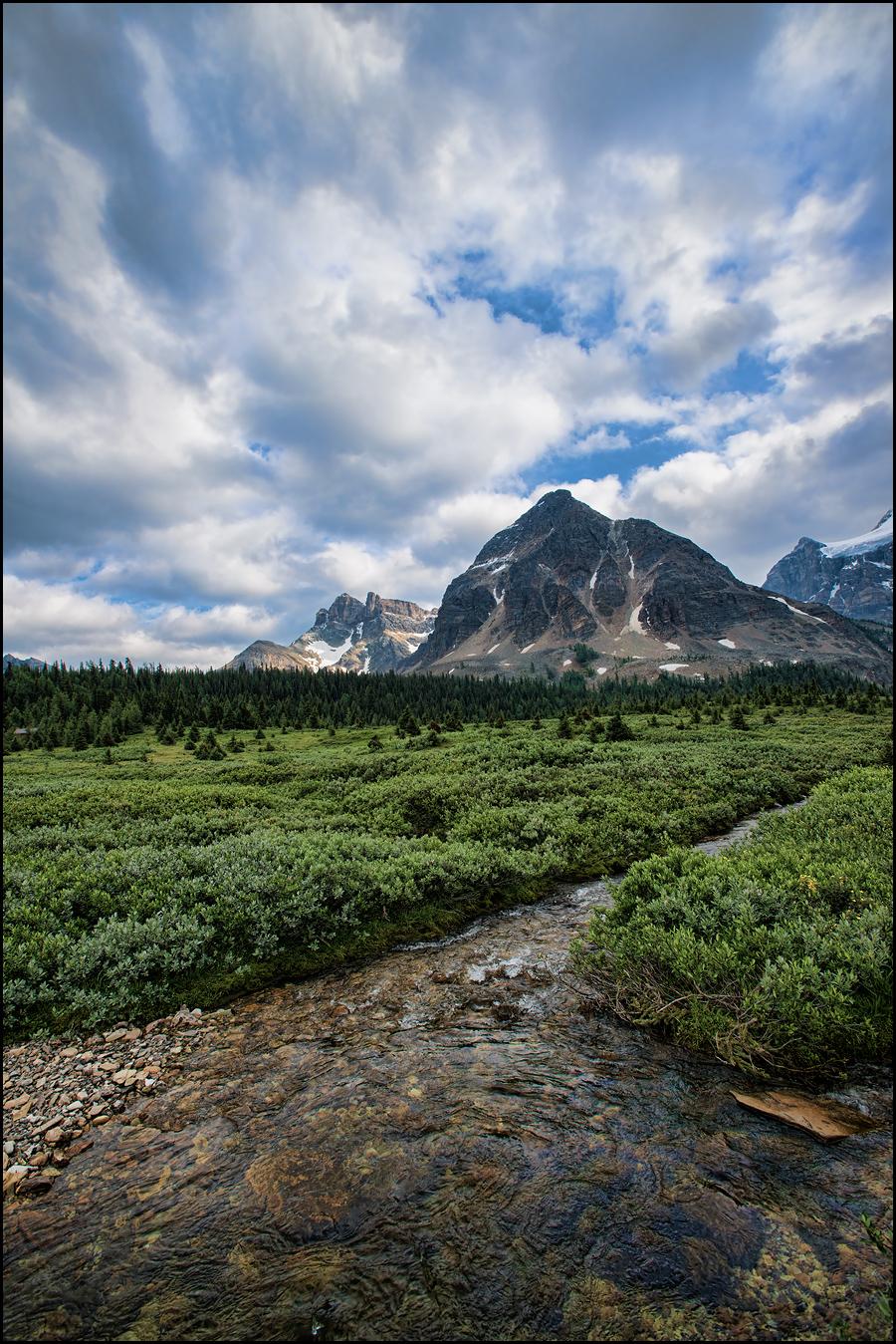 247_Calgary_photographer_Alexander_Gubski
