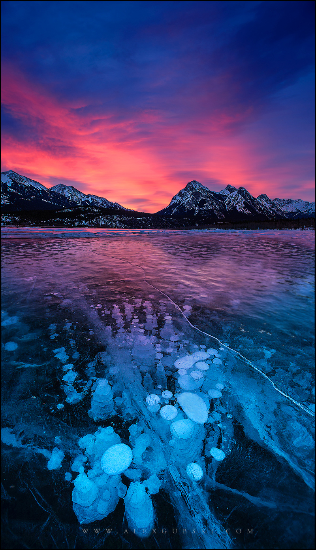 430_Calgary_photographer_Alexander_Gubski