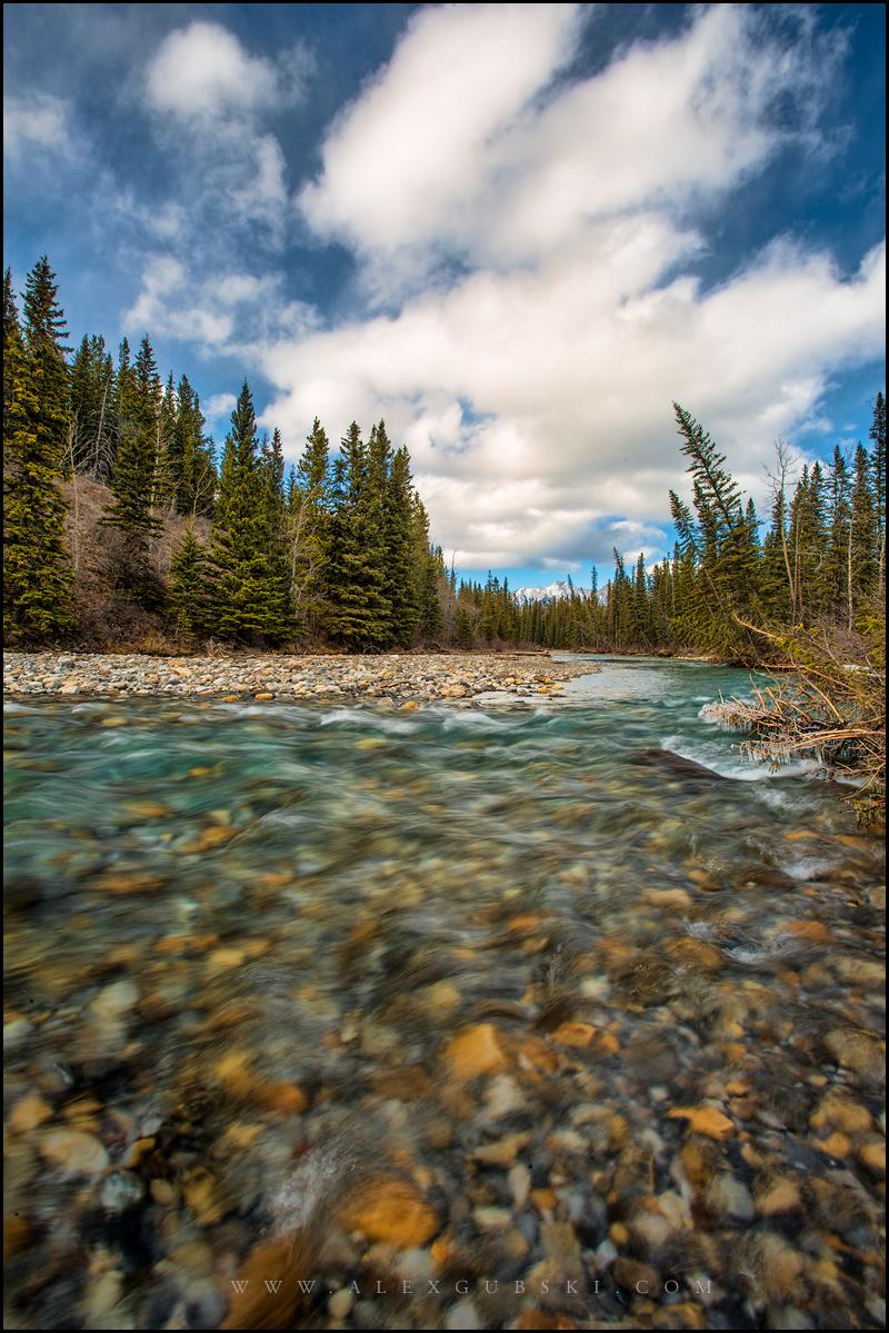 481_Calgary_photographer_Alexander_Gubski