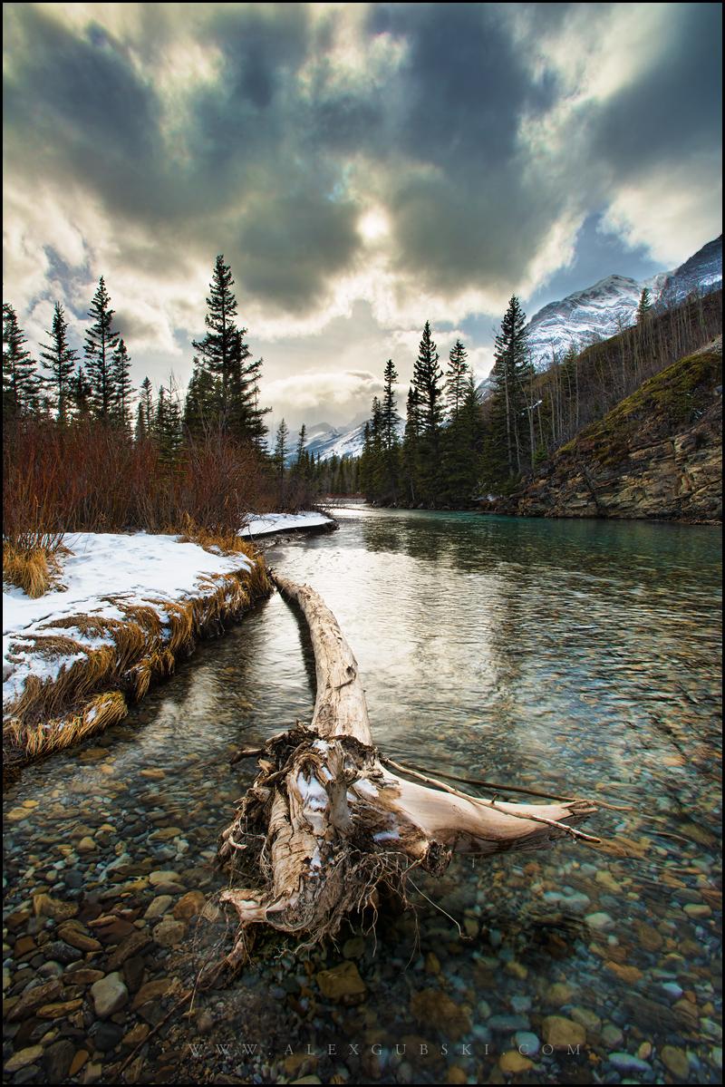 482_Calgary_photographer_Alexander_Gubski