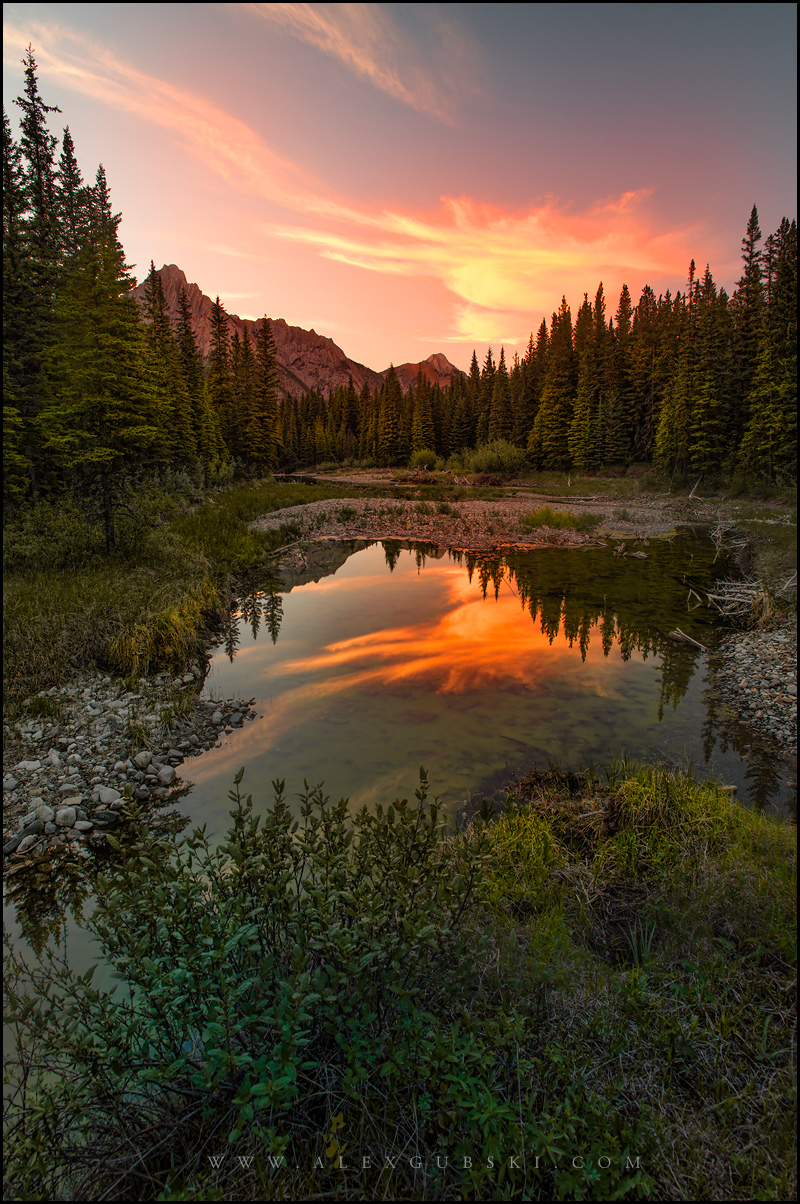 616_Calgary_photographer_Alexander_Gubski