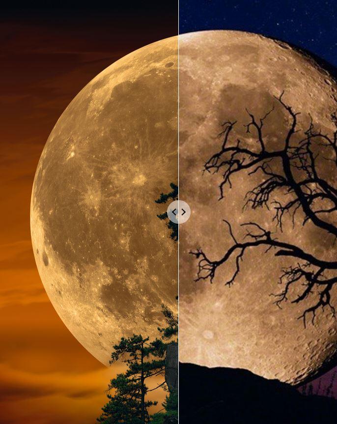 Peter Lik Bella Luna vs Moonlit Dreams