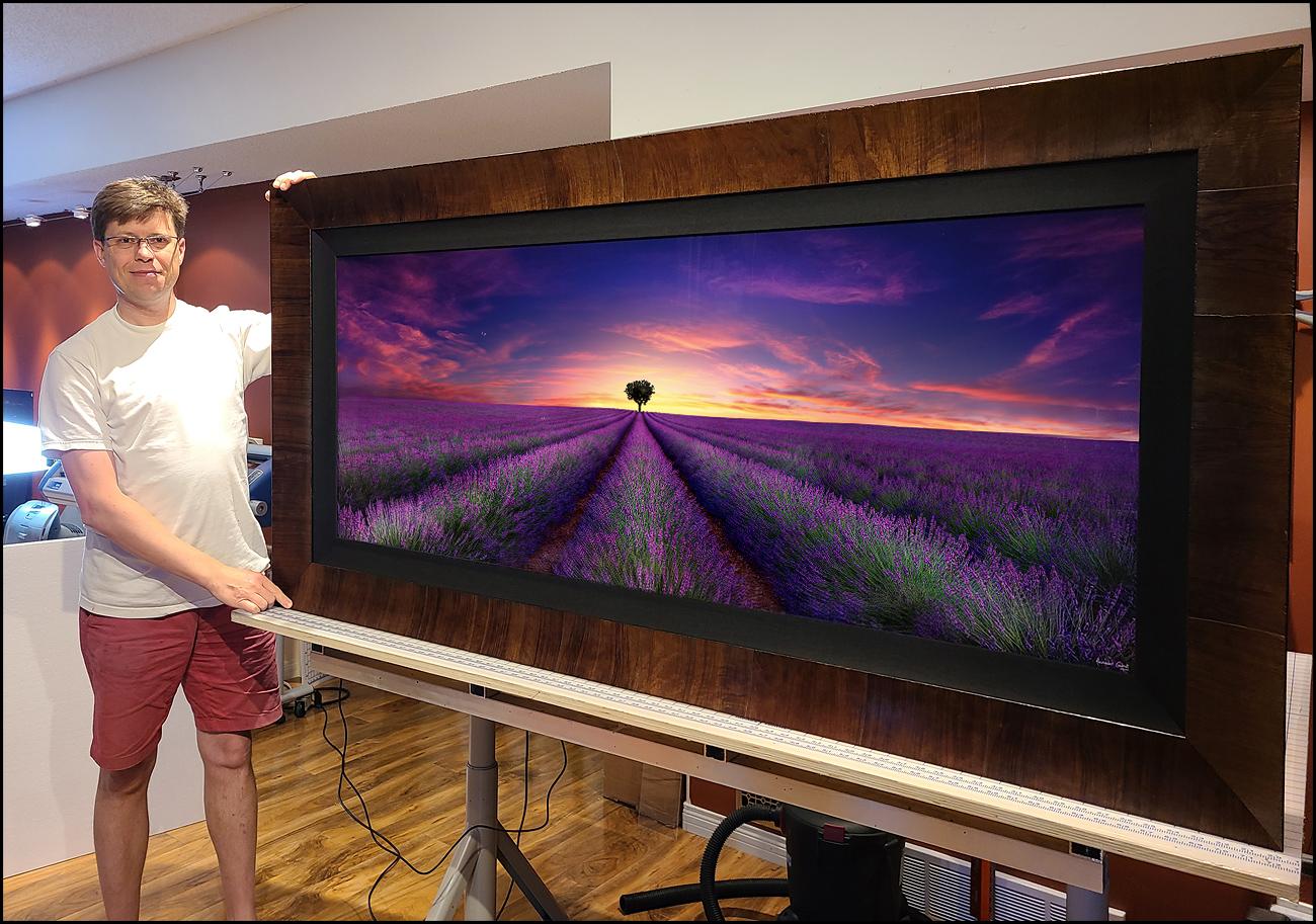 Lavender Summer Framed