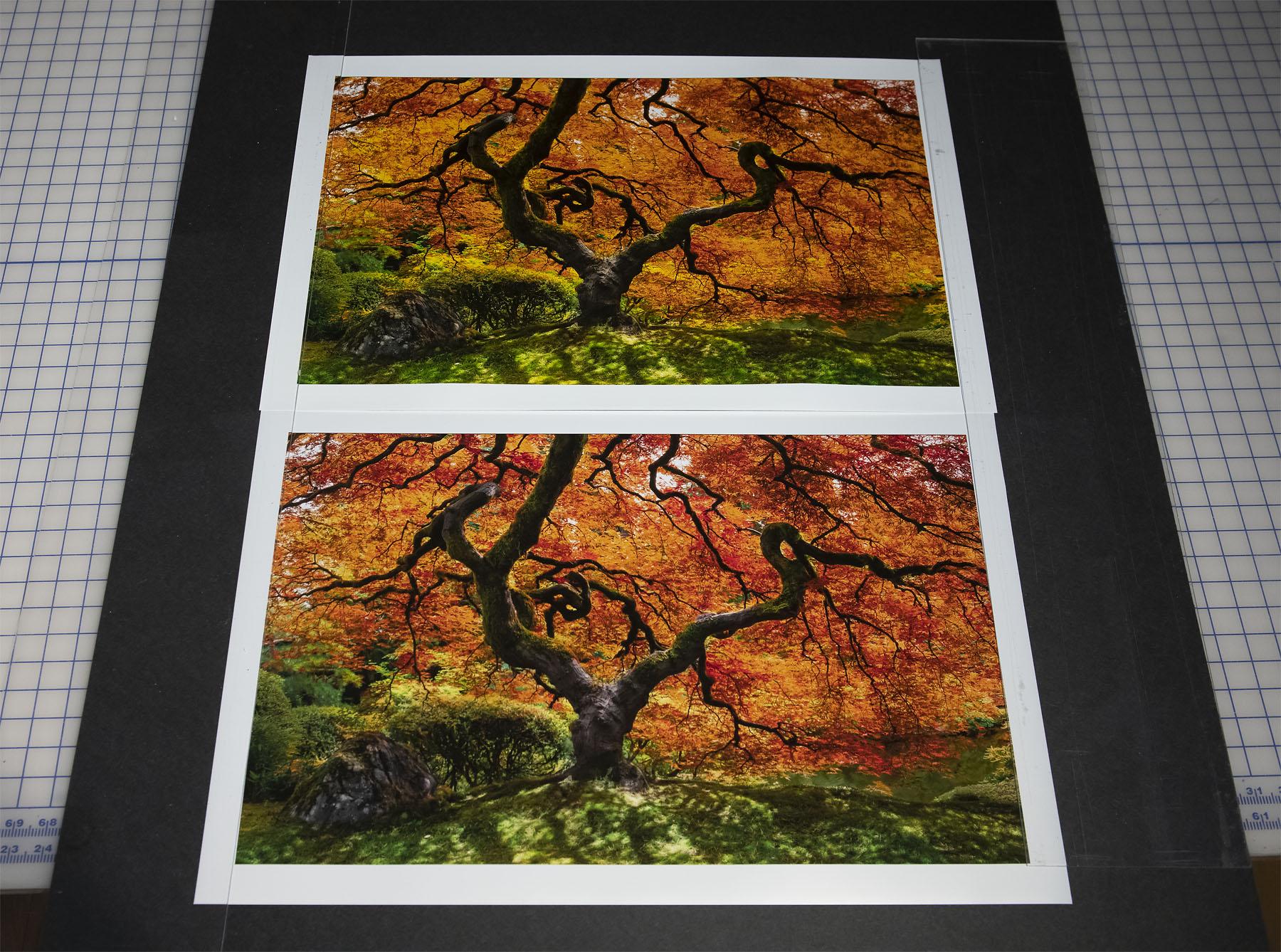 FujiFlex vs InkJet Prints