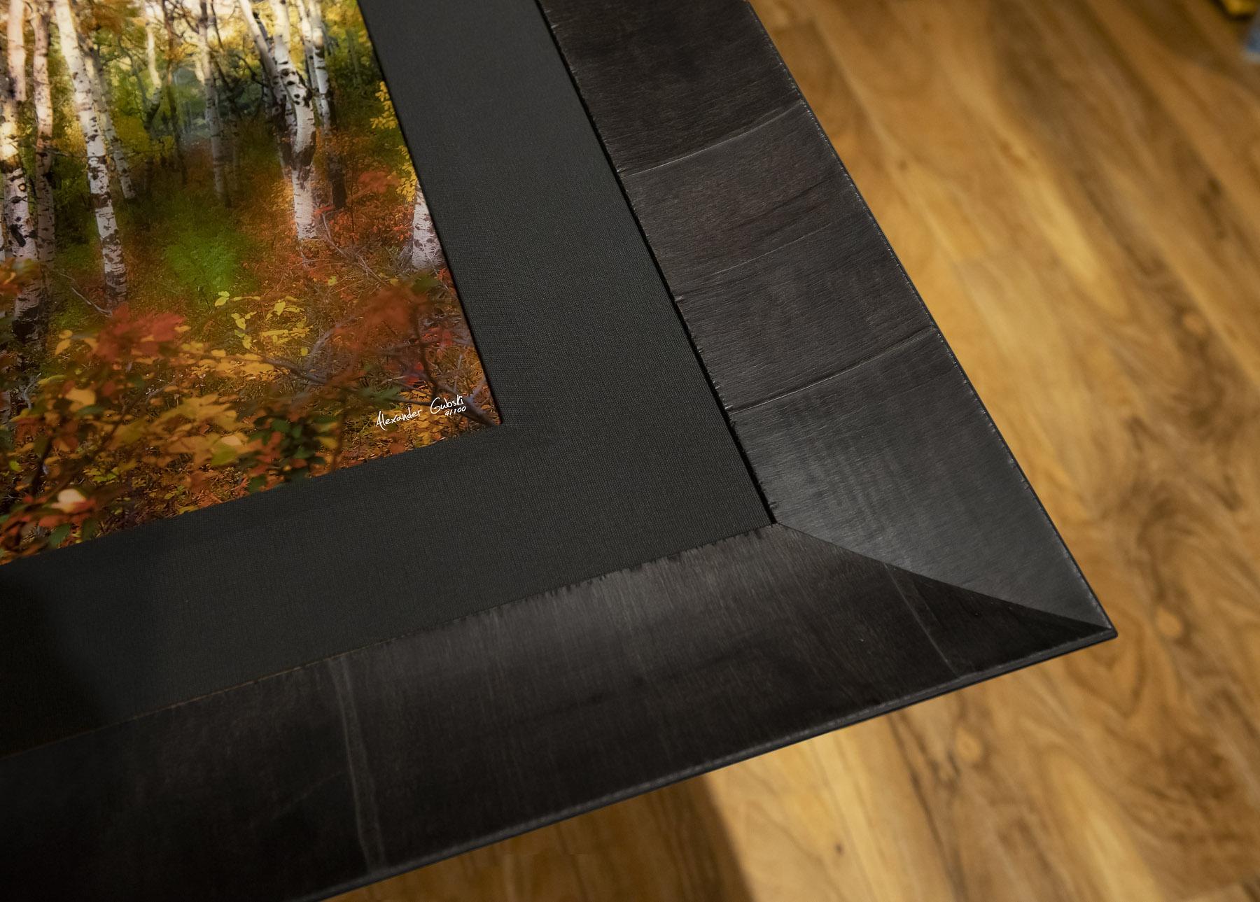 roma-framed-lumachrome-trulife-acrylic-fine-art-print