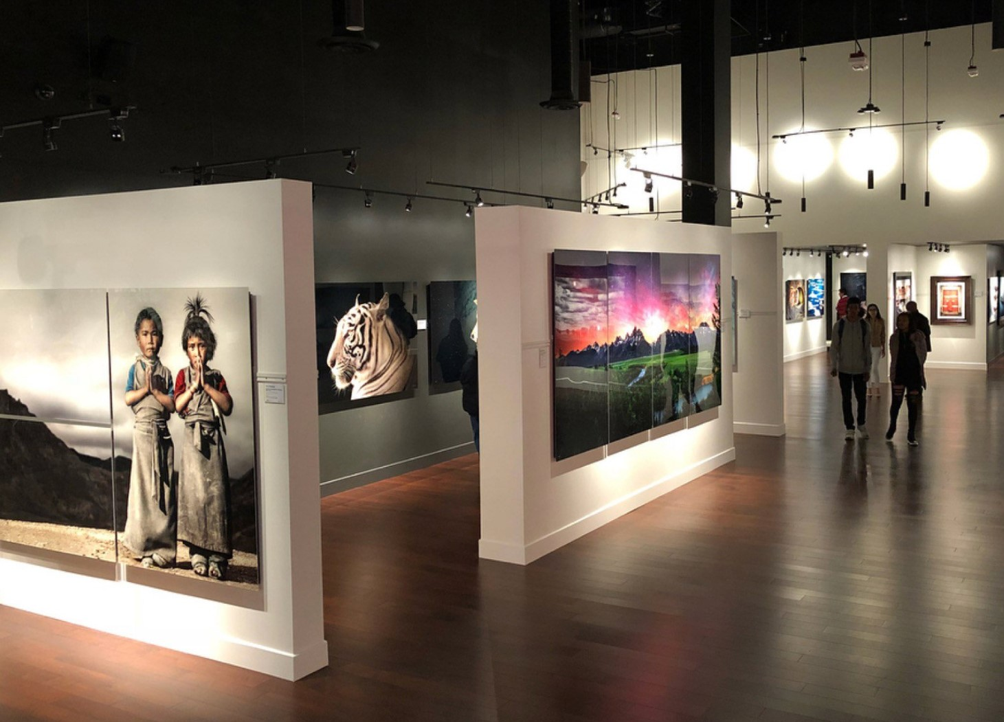 National Geographic Fine Art galleries in Las Vegas
